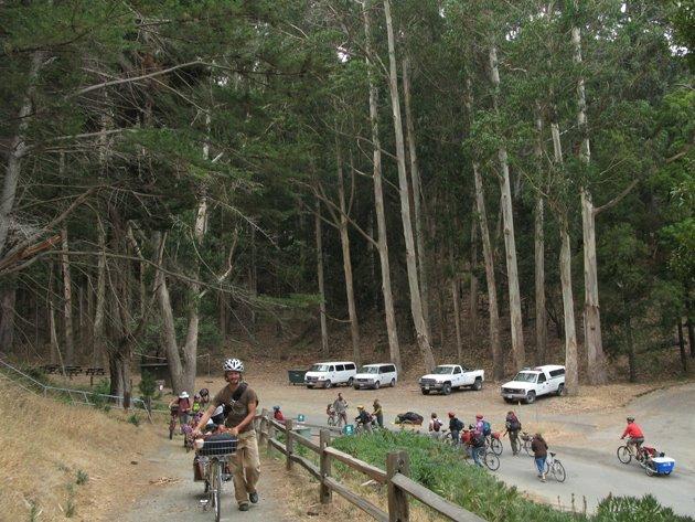 http://www.davidwilsonandribbons.com/files/gimgs/37_bikecrusade.jpg